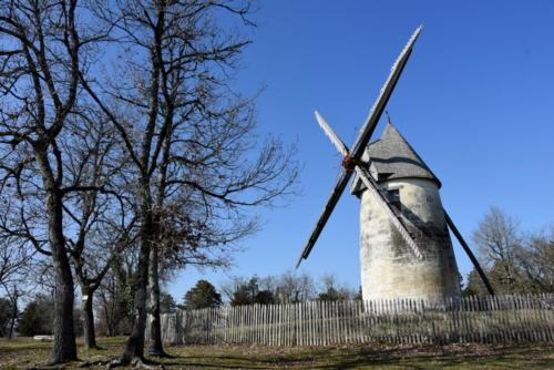 La tour blanche SCOT PV Photoc