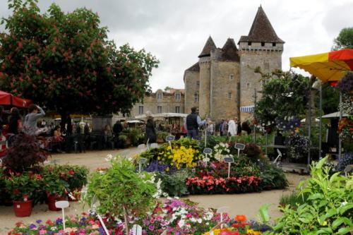Fleurs, St Jean de C SCOT PV Photoc